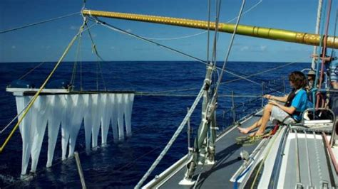 19 Year Old Develops Machine To Clean The Oceans Of