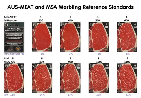 Beef Grading 201: How the world grades beef – Meat N' Bone